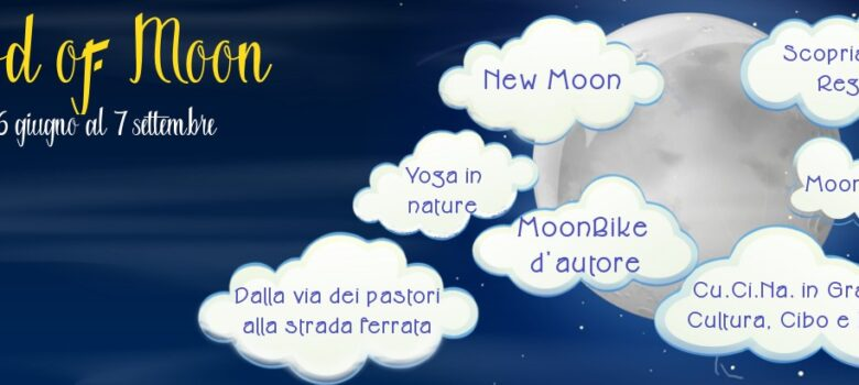 mood of moon copertina sito